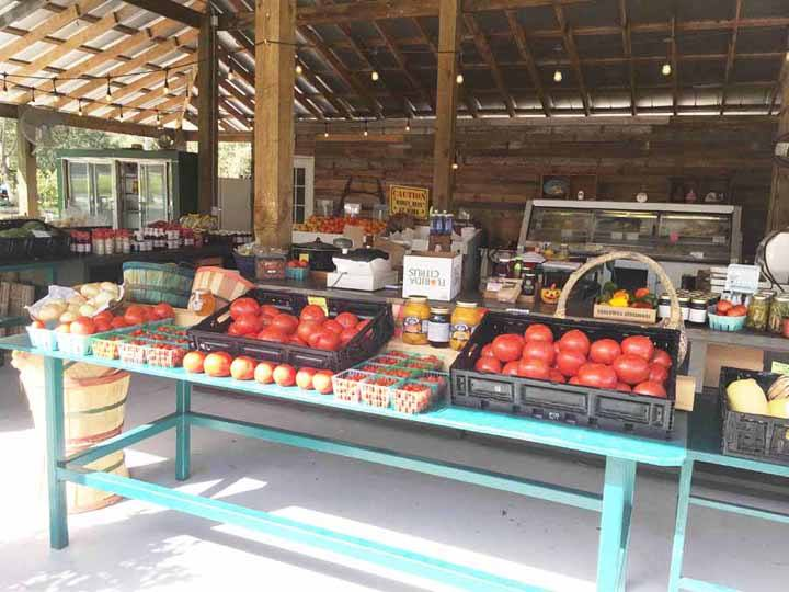 Vegetable stand at Peterson Groves Vero Beach Florida