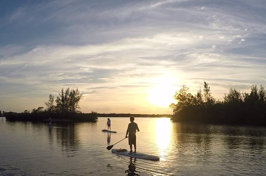 Sunset paddle board or kayak tour
