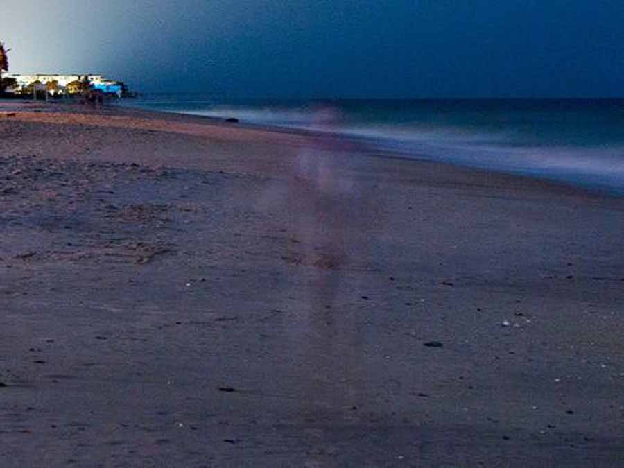 Photo of apparition taken on Vero's beach