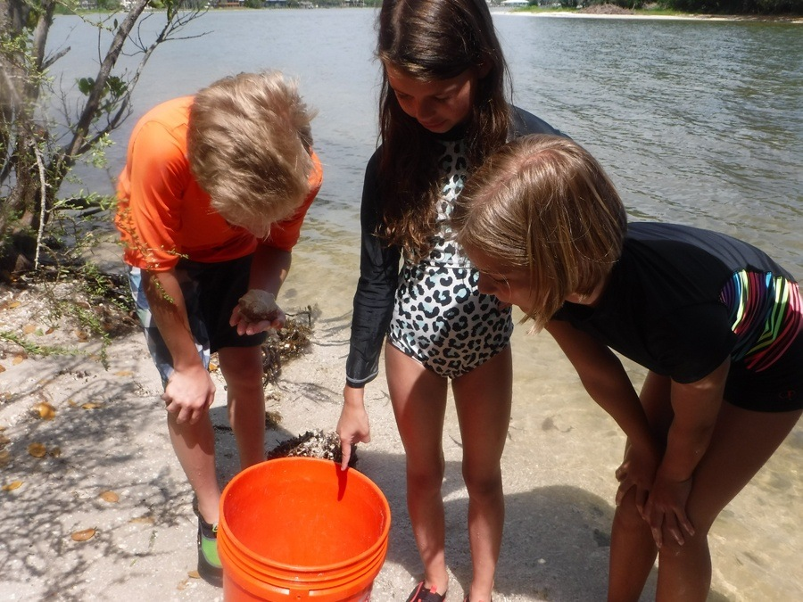 Three kids looking at what they caught in their pail