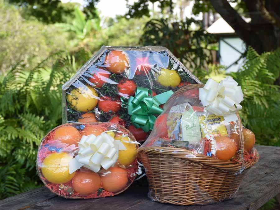 Countryside Citrus Vero Beach Florida gift basket