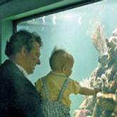 man and baby looking at fish through glass window