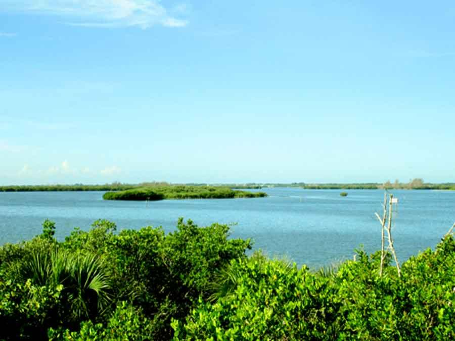 view of Pelican Island from land