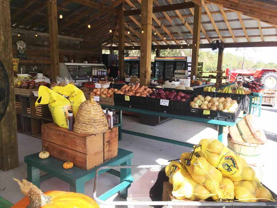 Locally grown produce stand vero beach florida