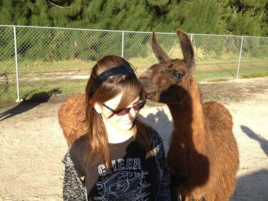 Critter Haven girl with Llama