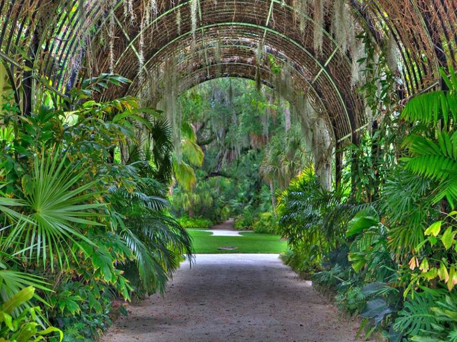 Mckee botanical garden attractions vero beach fl - Mckee botanical gardens vero beach ...