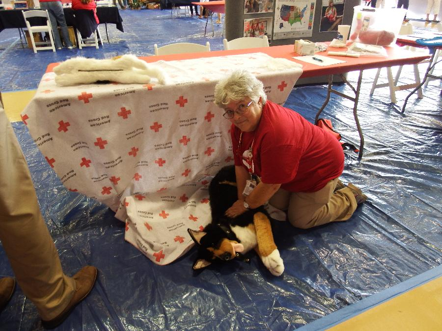 Pet First Aid: Judith Backof's Passion